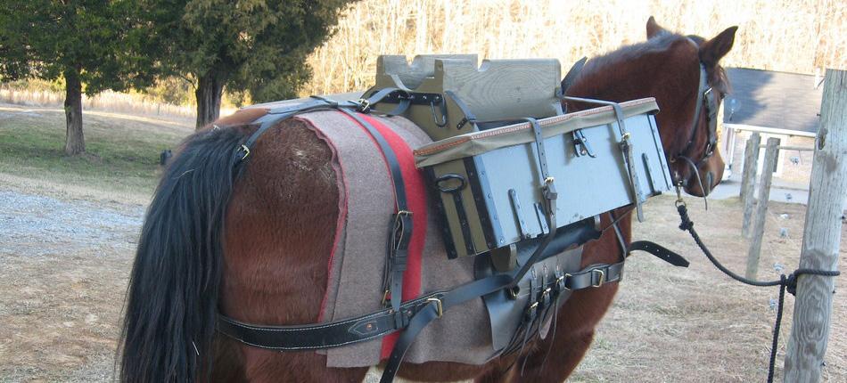 pack_saddle_005